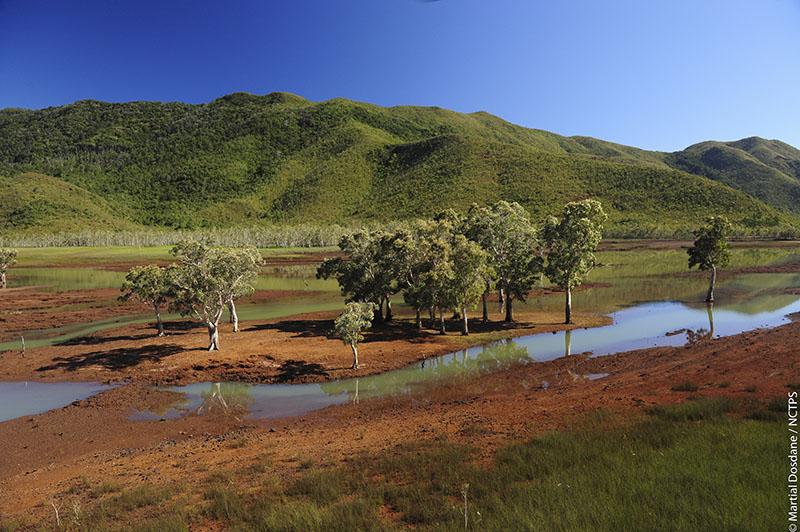 Les terres rouges de Nouvelle-Calédonie