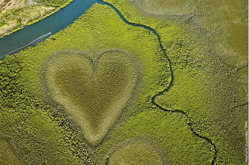 L'incroyable coeur de Voh en Nouvelle-Calédonie
